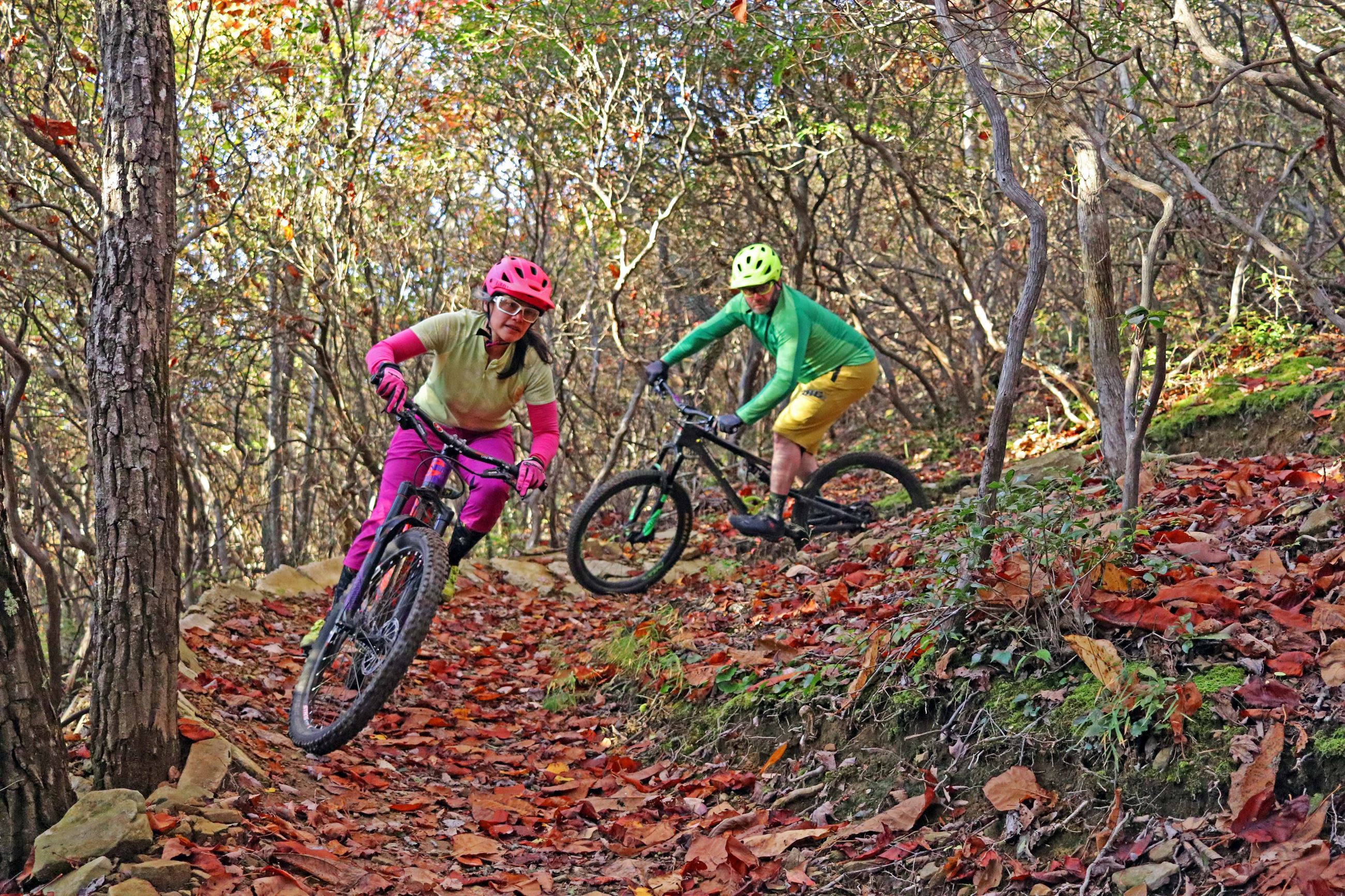 Photo of mountain bikers