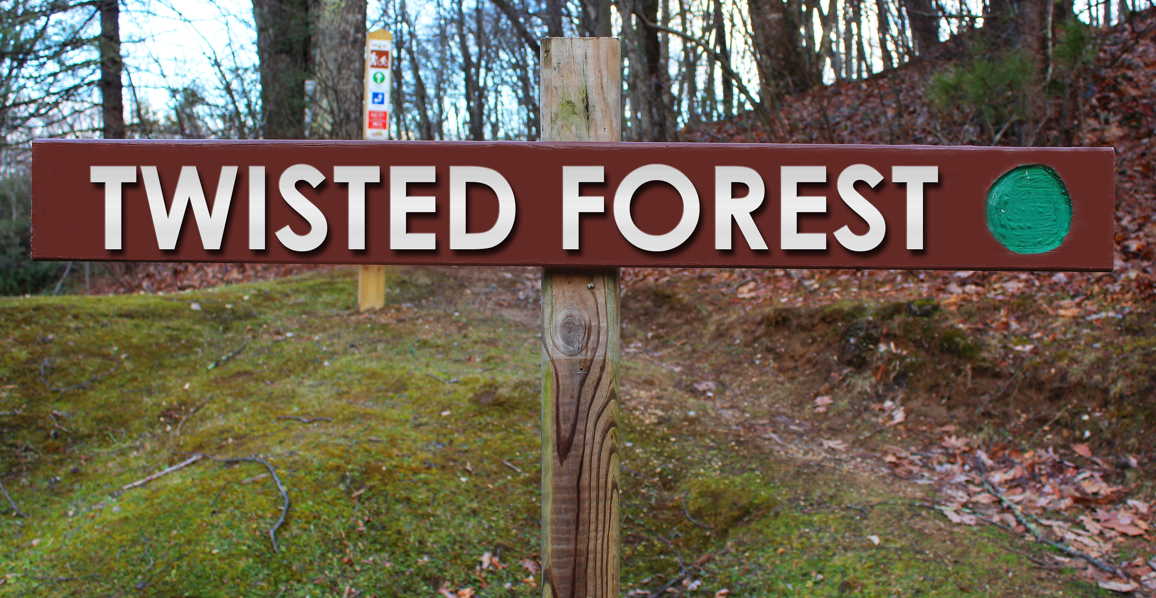 Picture of Twisted Forest trail sign