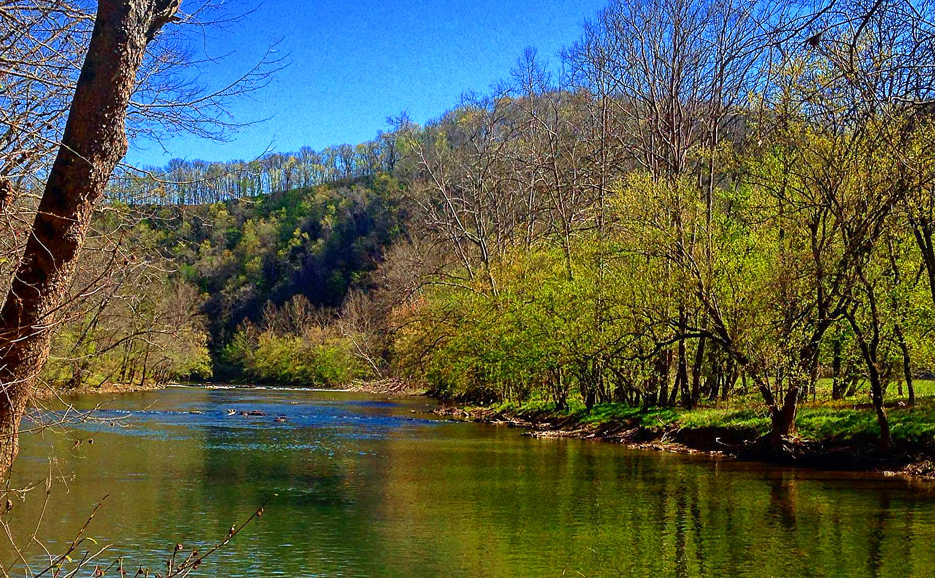 Picture of Clinch River